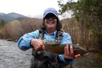 Beauty Rainbow on a New Mexico fly fishing guide trip while fly fishing near Red River and Taos